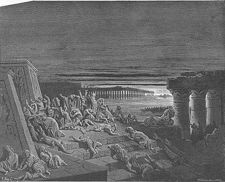 The Ninth Plague - Darkness - Art